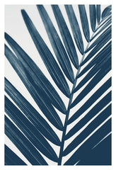 Blue Palm #1 - Fine Art Photograph