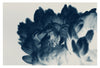 Blue Paeonia #5 -  Fine Art Photograph