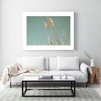 Beach Grass Blues - Fine Art Photograph