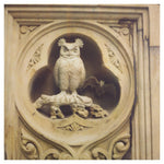 Central Park: Owl - Fine Art Photograph