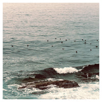 Birds, Rocks and Waves - Fine Art Photograph