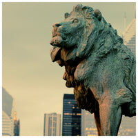 Lion #1 - Fine Art Photograph