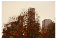 Autumn In Chicago - Fine Art Photograph