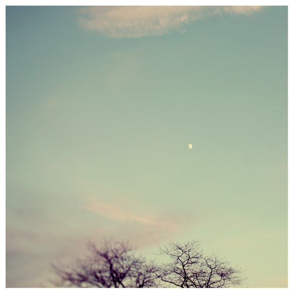 Moonrise - Fine Art Photograph