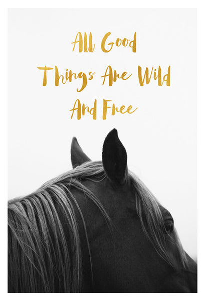 All Good Things Are Wild & Free (Horse) - Fine Art Photograph