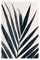 Gray Palm #3 - Fine Art Photograph
