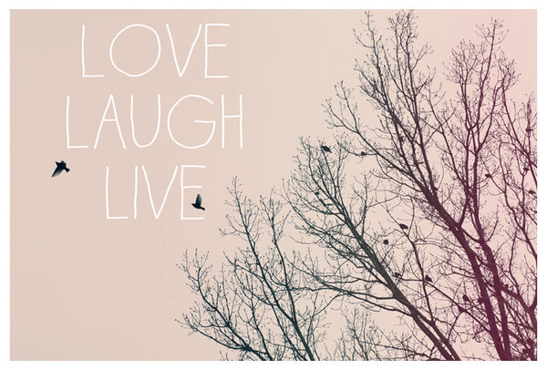 Love Laugh Live - Fine Art Photograph