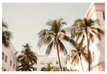 Miami #2- Fine Art Photograph