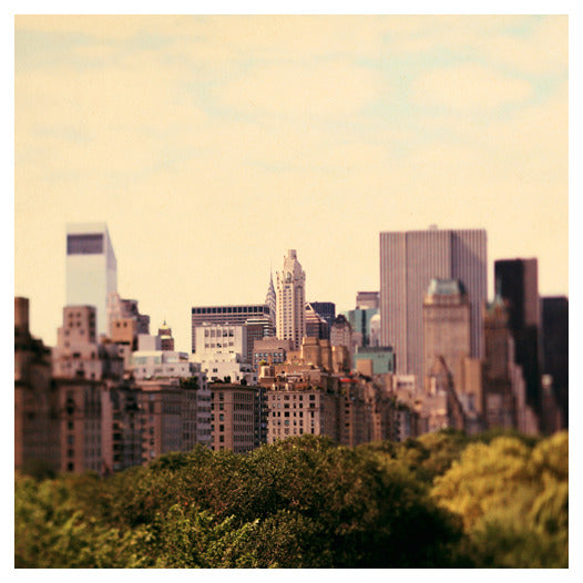 Skyline #1 - Fine Art Photograph