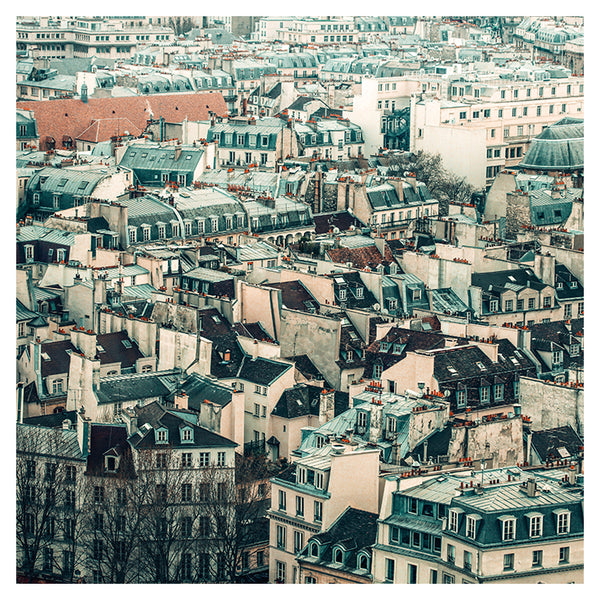 Paris Rooftop #6 - Fine Art Photograph