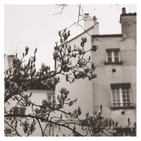 Montmartre in Gray