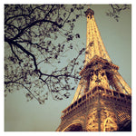 Fine art Eiffel Tower photograph by Alicia Bock.