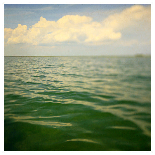 Sea of Green - Fine Art Photograph