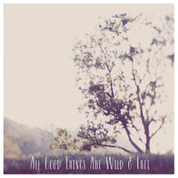 All Good Things (Tree) - Fine Art Photograph