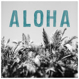 Aloha Palm - Fine Art Photograph