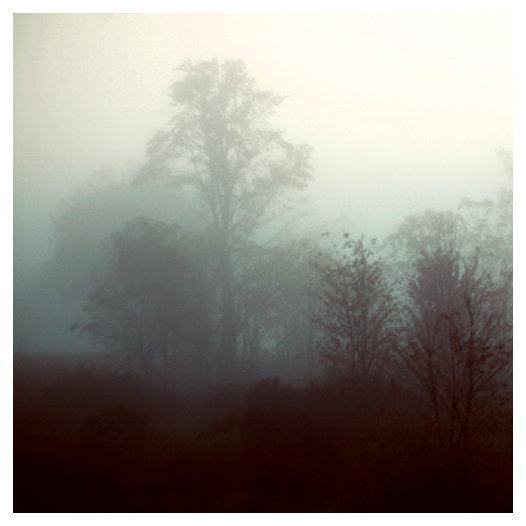 Fog: Steel - Fine Art Photograph