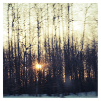 Winter Twilight - Fine Art Photograph