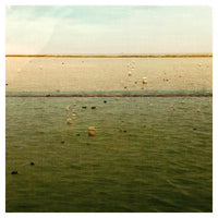 Lakeshore #3 - Fine Art Photograph