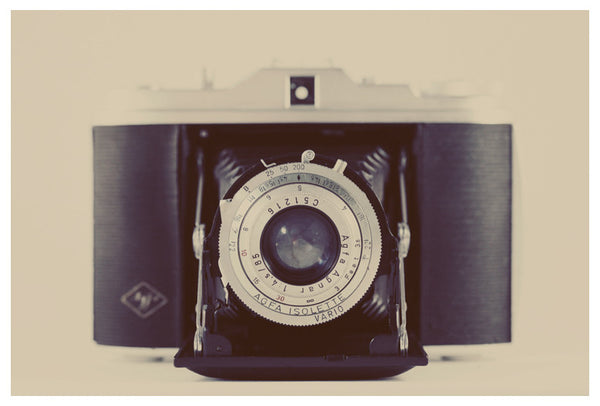 Vintage Agfa Isolette camera photographed by Alicia Bock.