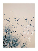 Love Laugh Live #2 - Card