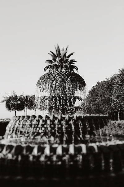 Pineapple Fountain #1 - Fine Art Photograph