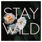 Stay Wild (Rose) - Fine Art Photograph