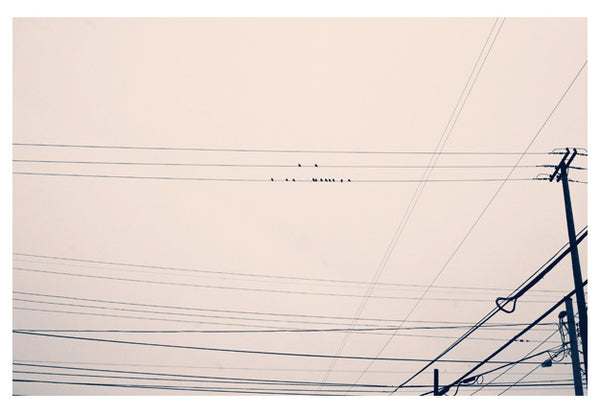 Dotted Lines - Fine Art Photograph