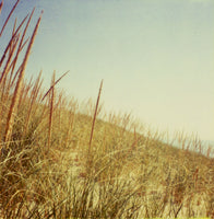 Dunegrass - Fine Art Photograph