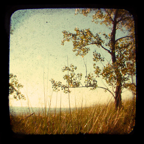 Late August - Fine Art Photograph
