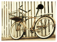 Fence with Bike - Fine Art Photograph