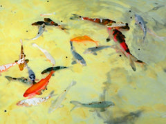 Yellow Koi - Fine Art Photograph