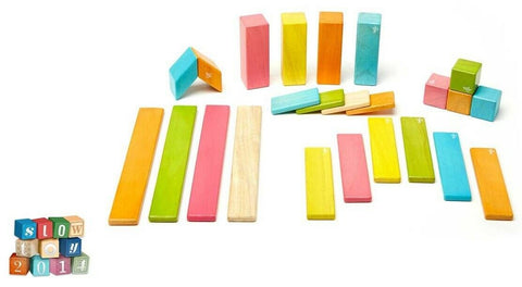 Classics Magnetic Wooden Blocks Building Toy