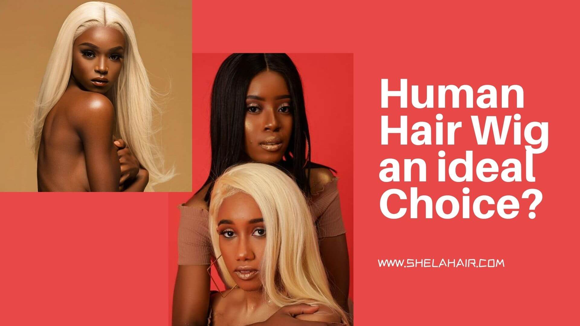 Is the Human Hair Wig an ideal Choice when it comes to Beauty?