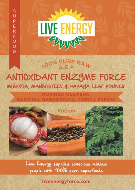 Antioxidant Enzyme Force 500g powder