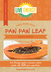 100% Pure Raw Paw Paw Leaf, 200 Capsules