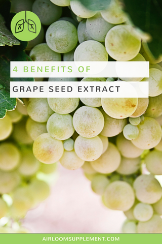 Benefits of Organic Grape Seed Extract | airloomsupplement.com