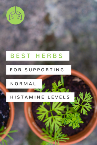 Best Herbs for Normal Histamine Levels | airloomsupplement.com