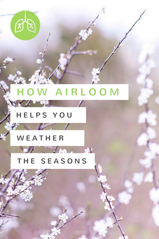 How Airloom Helps You Weather the Seasons | airloomsupplement.com
