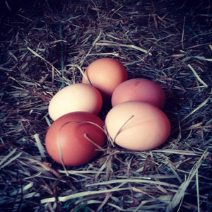 Farm Fresh Gorsky's Farm Eggs
