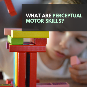 What are Perceptual Motor Skills?