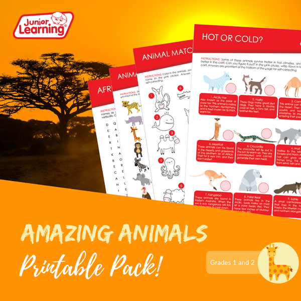 Amazing Animals Promo