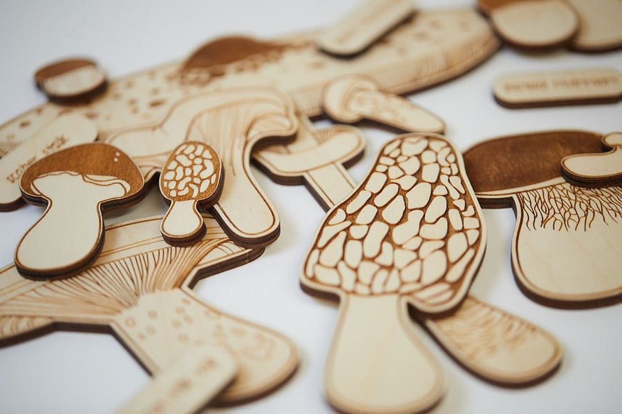Mushrooms 2-layer learn-about-nature wooden puzzle - Moo Like a Monkey