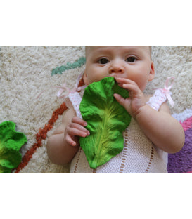 Kale Teether - Moo Like a Monkey
