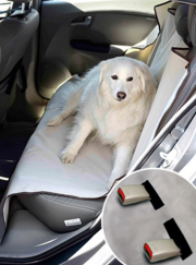 Go on road trips with your best friend and protect your car at the same time!