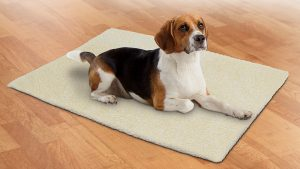 Keep puppy warm with the Self Warming Pet Blanket.