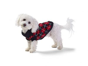 Your pooch will be warm and fashionable in the argyle knit sweater!