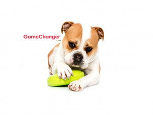 GameChanger is the ultra tough dog toy that will keep your pup entertained for hours