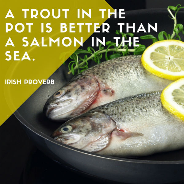 A trout in the pot is better than a salmon in the sea