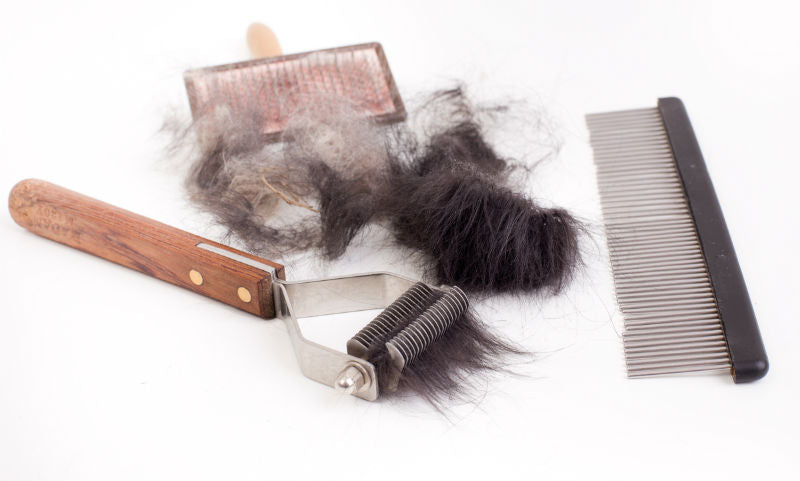 Different types of brushes for pet fur