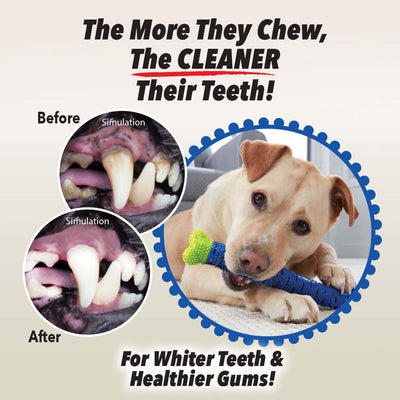 "includes text ""The More They Chew, The CLEANER Their Teeth!"", ""For Whiter Teeth & Healthier Gums!"",a dog chewing on a Chewbrush, two before and after close up photos of a dog's mouth"